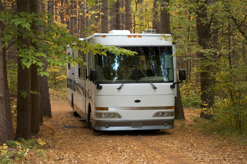 RV In Piney Woods